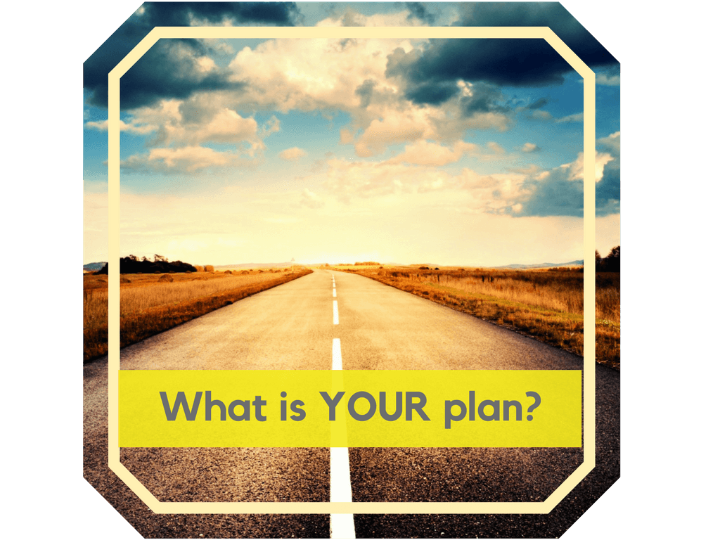 What is your Business plan as a driving instructor